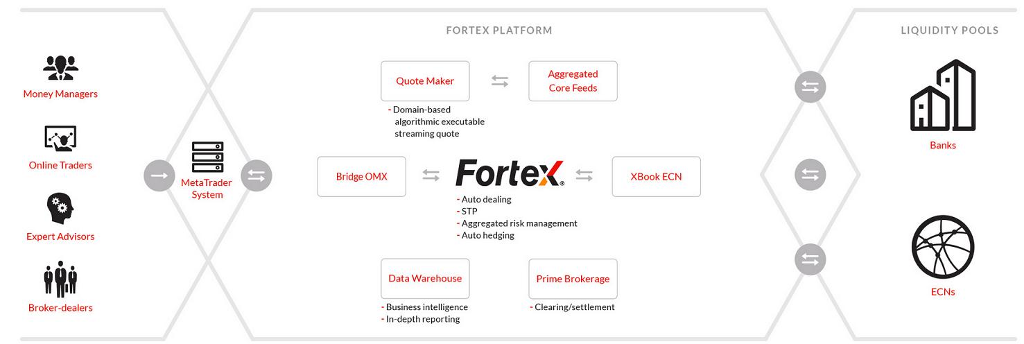 Fortex_Platform-1.png