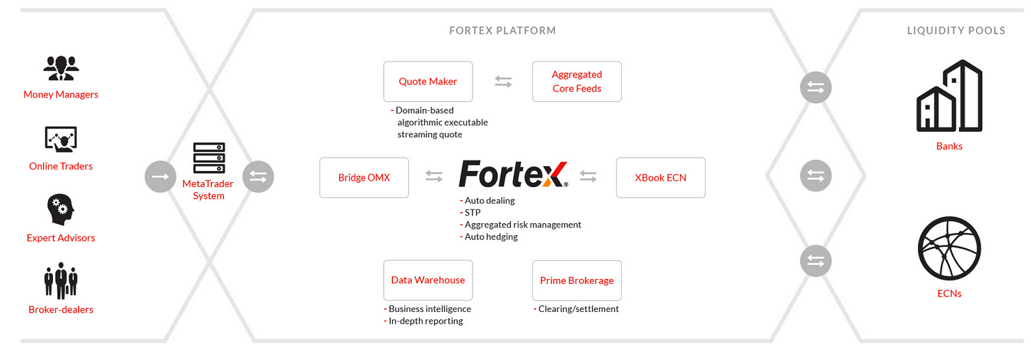 Fortex_Platform