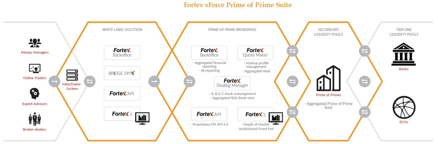 Fortex xForce Prime of Prime Suite